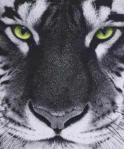 Tapis de souris Tigre blanc aux yeux verts perçants