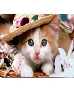 tapis de souris motif chat charmeur sous un sombrero