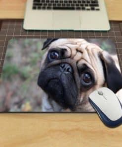 tapis de souris chien mignon au regard tendre