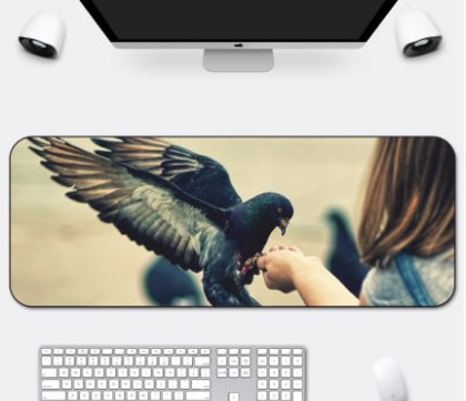 Tapis de souris très grande taille 1200x600 Pigeon qui picore dans la main