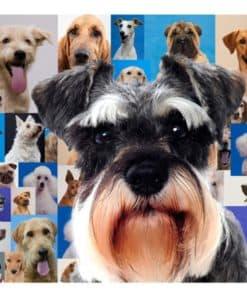 Tapis de souris chiot schnauzer sur mosaïque de chiens